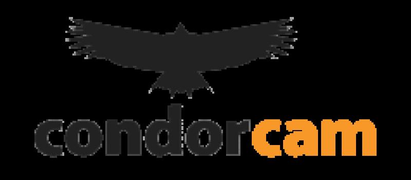 CondorCam